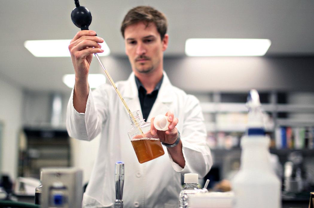 У немецких ученых энергосберегающее пиво